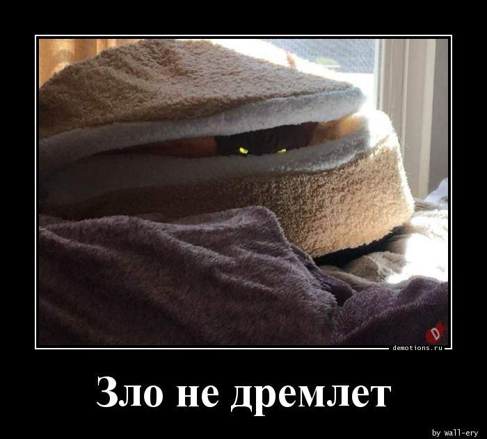 1555571172_demotivatory-4.jpg