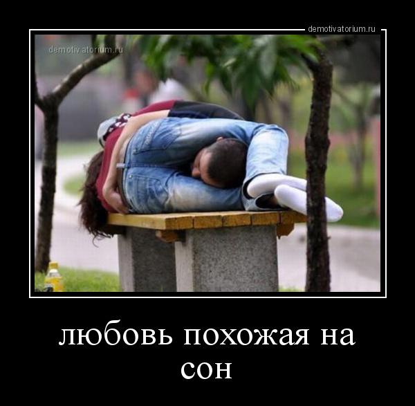 demotivatorium_ru_lubov_pohojaja_na_son_172924.jpg