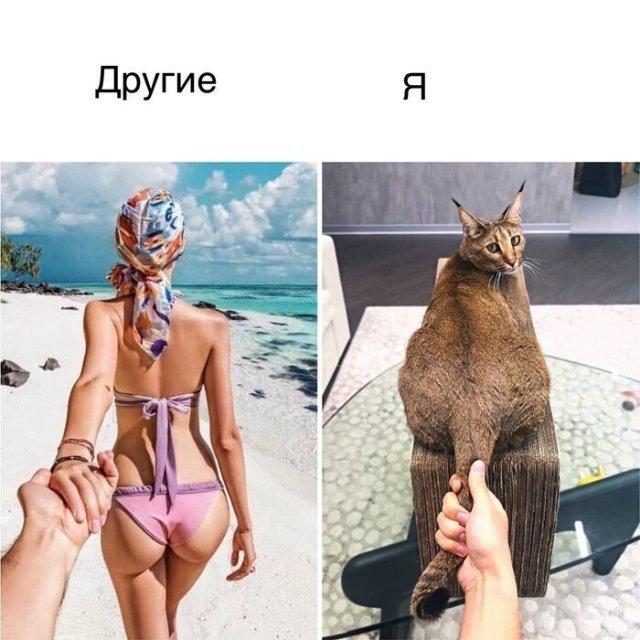 kogda_zhenskie_ozhidanija_ne_opravdalis_13_foto_12.jpg
