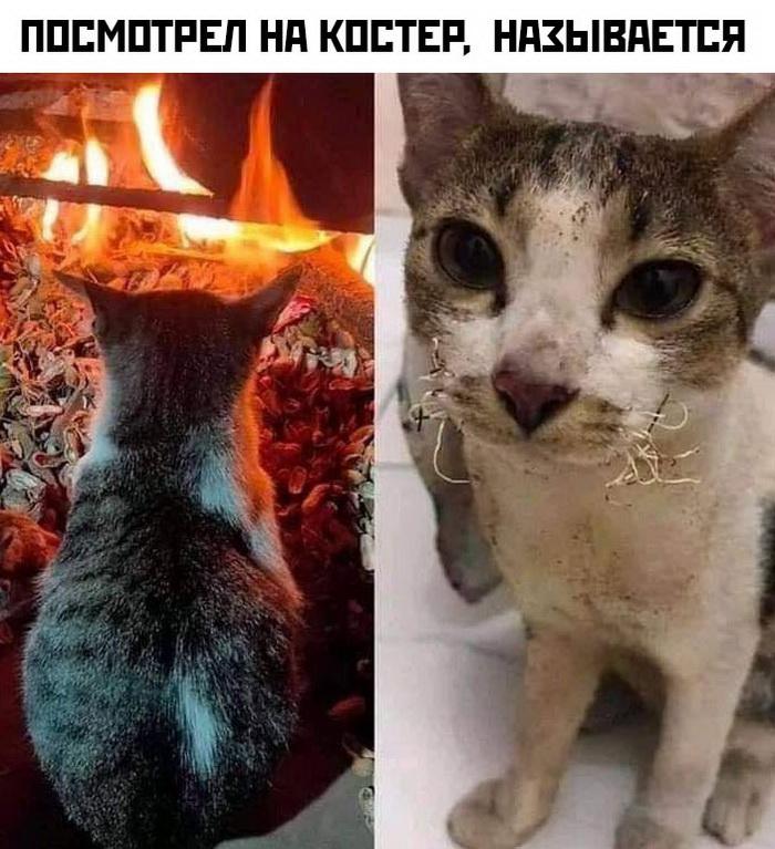 1580836136_socseti-49.jpg