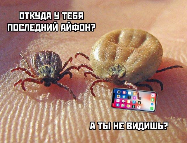 fotopodborka_pjatnicy_35_foto_15.jpg