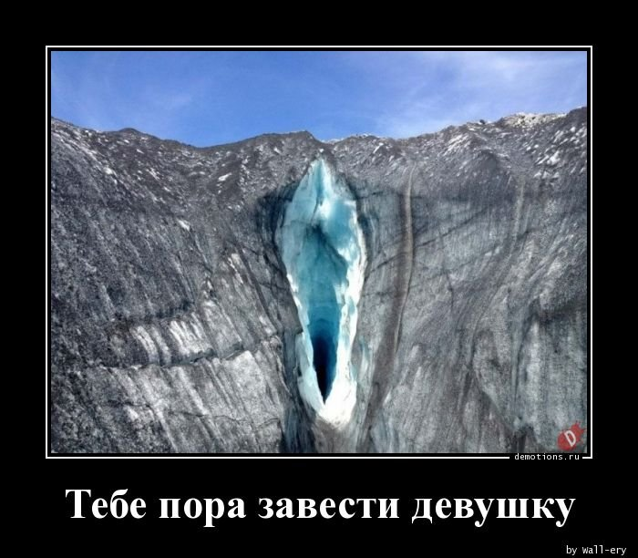 1556263267_demotivatory-17.jpg