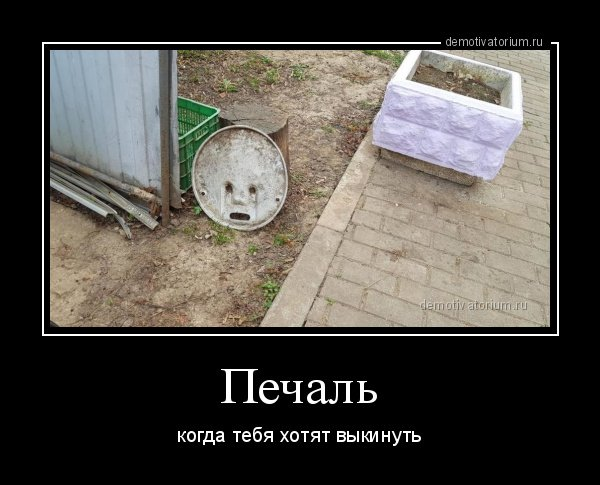 1556778945_demotivatory-16.jpg
