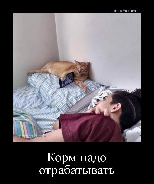 korm_nado_otrabativat_173118.jpg
