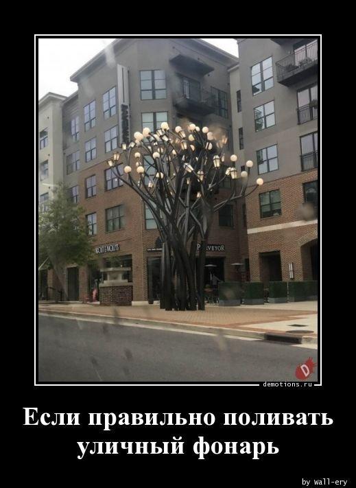 1557297573_demotivatory-19.jpg