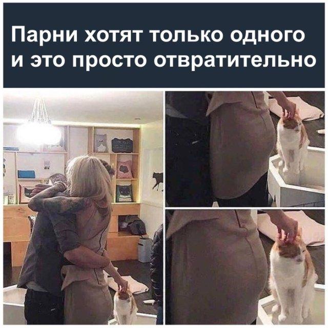 fotopodborka_pjatnicy_39_foto_15.jpg