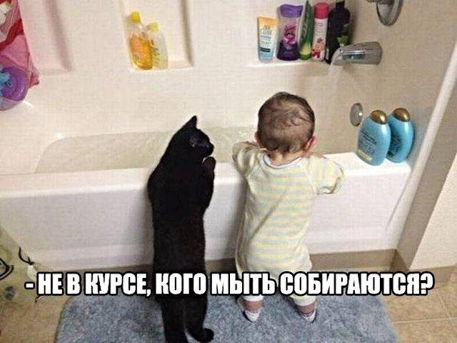 fotopodborka_vtornika_17_foto_17.jpg