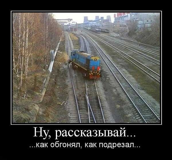 1558940235_demki-9.jpg