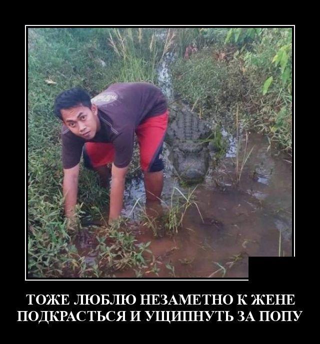 demotivatory_na_vtornik_30_foto_13.jpg