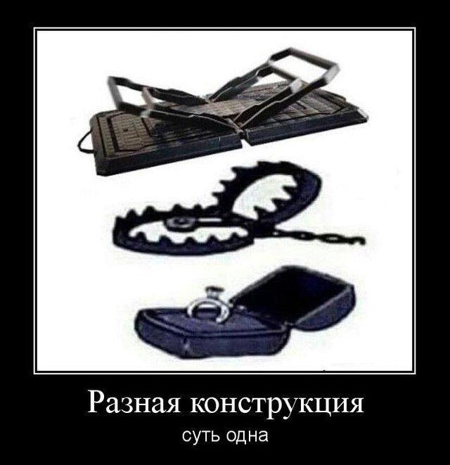 demotivatory_na_vtornik_30_foto_28.jpg