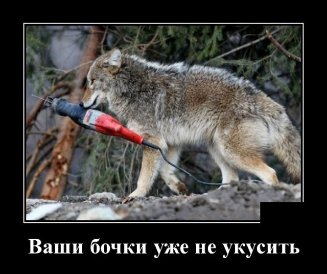 demotivatory_na_sredu_27_foto_7.jpg