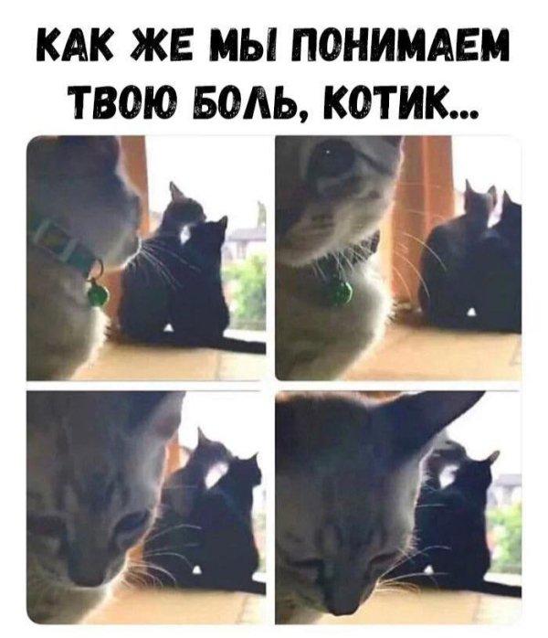 fotopodborka_pjatnicy_37_foto_4.jpg