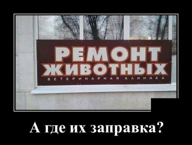 demotivatory_na_sredu_23_foto_4.jpg