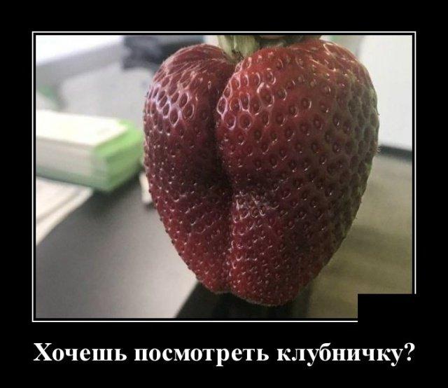 demotivatory_na_ponedelnik_29_foto_3.jpg