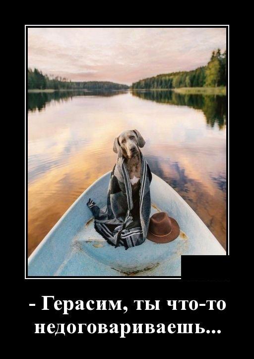 demotivatory_na_ponedelnik_29_foto_7.jpg