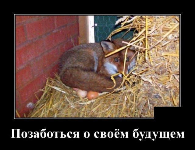 demotivatory_na_chetverg_29_foto_12.jpg