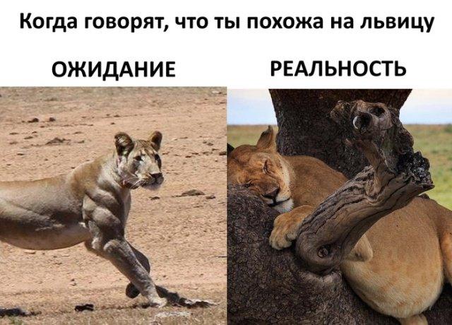 fotopodborka_subboty_63_foto_12.jpg