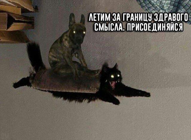 fotopodborka_subboty_63_foto_21.jpg
