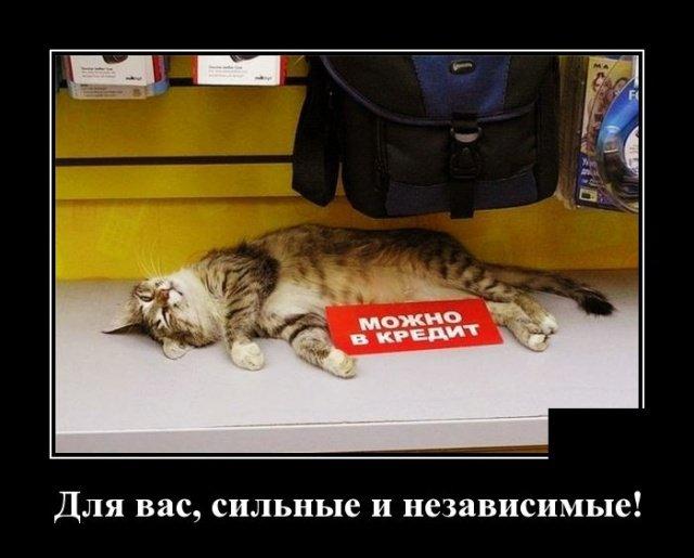 demotivatory_na_chetverg_30_foto_9.jpg
