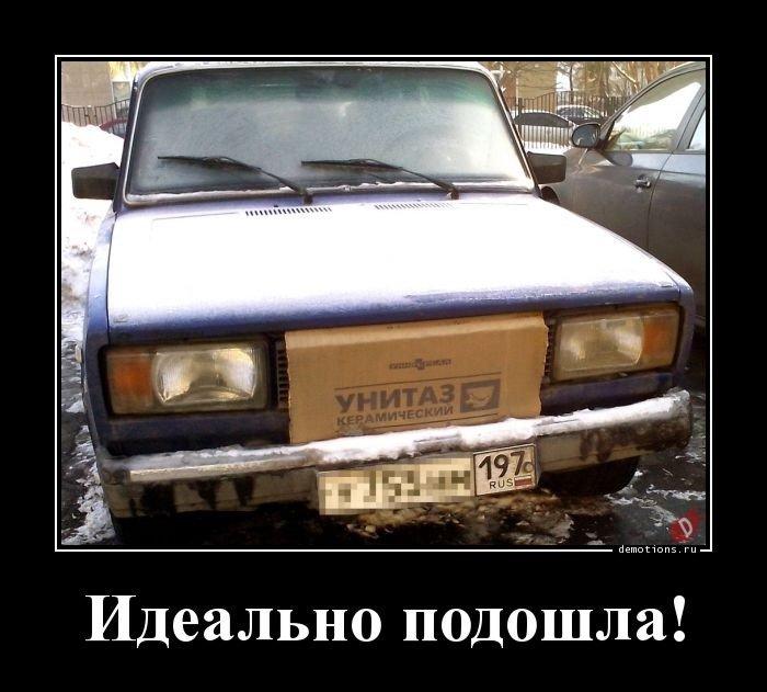 1553761019_demki-13.jpg