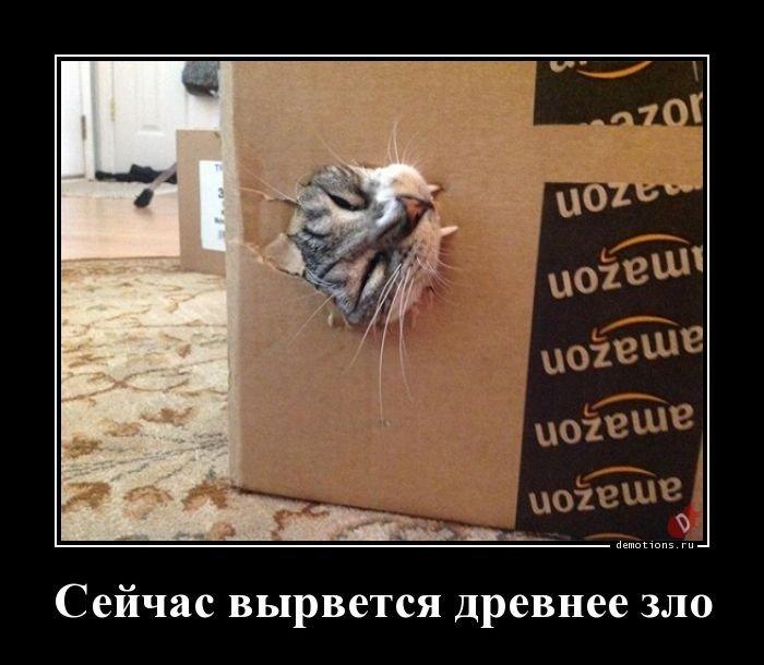 1553760979_demki-16.jpg
