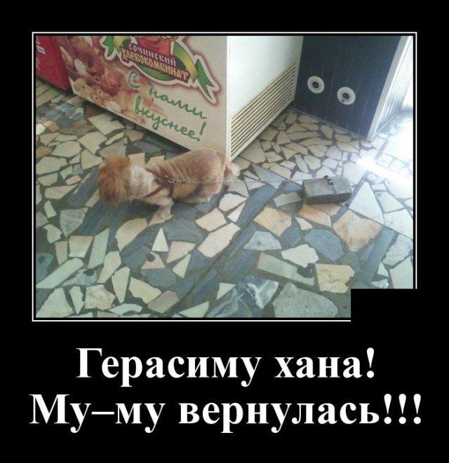 demotivatory_na_vtornik_30_foto_11.jpg