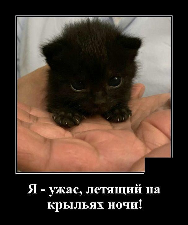 demotivatory_na_chetverg_30_foto_27.jpg