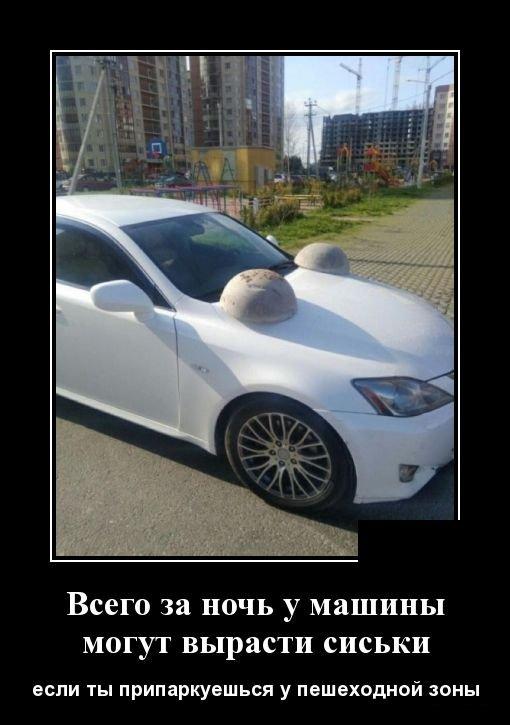 demotivatory_na_pjatnicu_30_foto_1.jpg