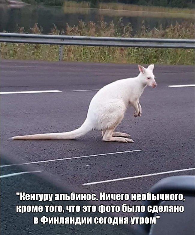 fotopodborka_subboty_51_foto_7.jpg