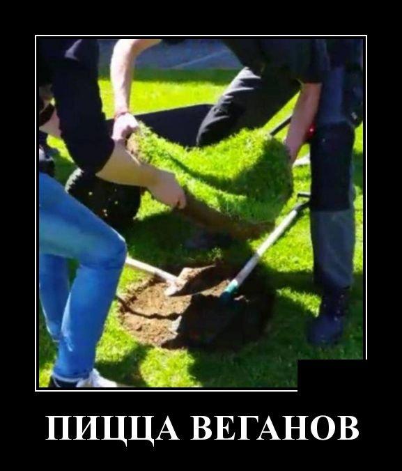demotivatory_na_pjatnicu_30_foto_21.jpg