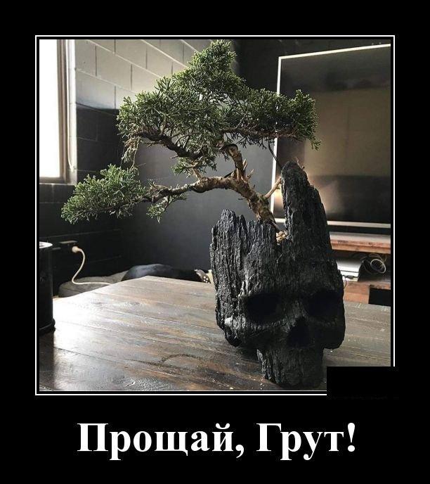 demotivatory_na_ponedelnik_30_foto_25.jpg
