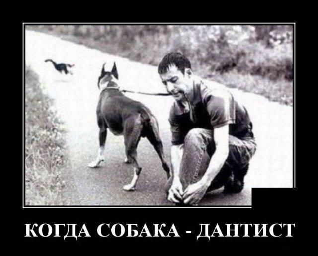 demotivatory_na_vtornik_30_foto_4.jpg