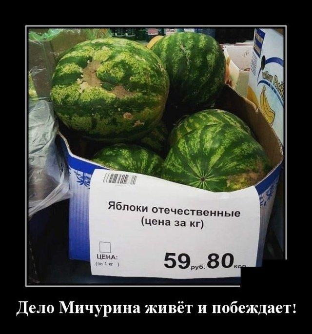 demotivatory_na_vtornik_20_foto_16.jpg