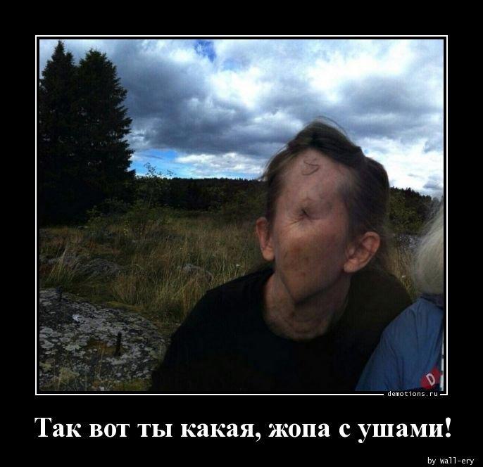 1554361586_demotivatory-2.jpg