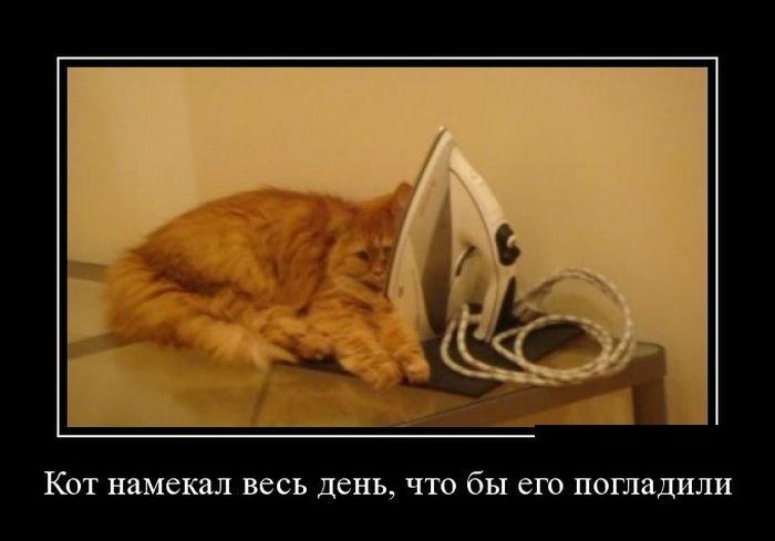 1554361639_demotivatory-7.jpg