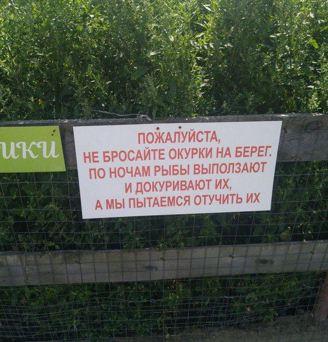 fotografii_s_rossijjskikh_prostorov_35_foto_3.jpg