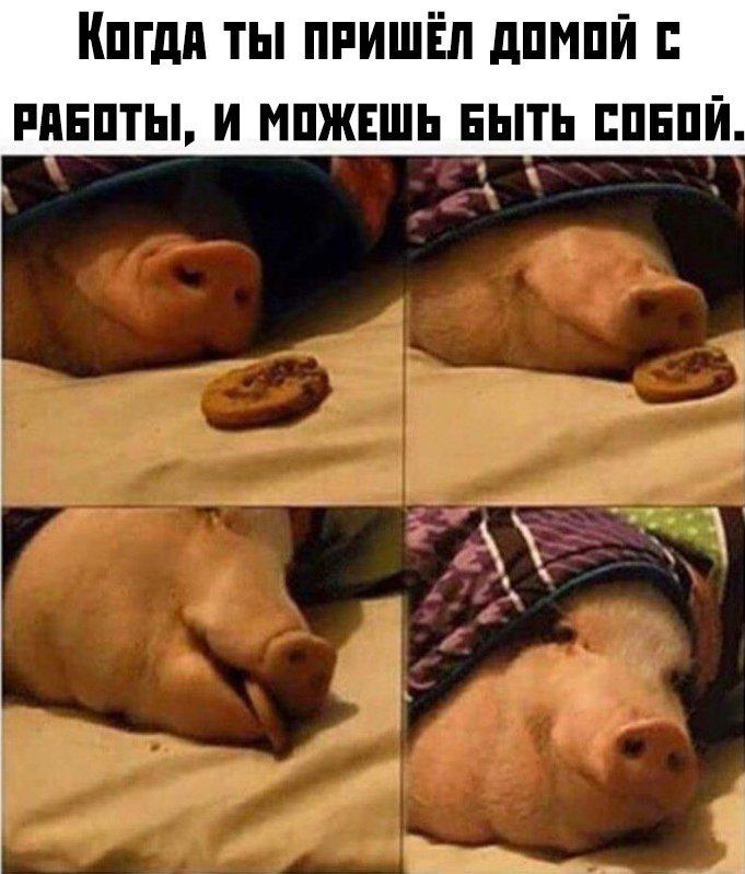 fotopodborka_subboty_48_foto_1.jpg