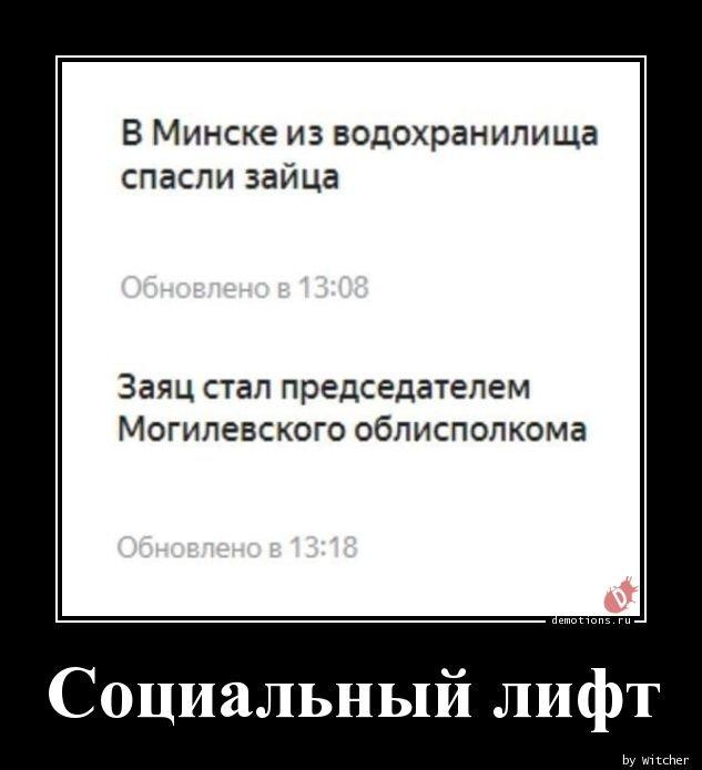 1554361629_demotivatory-11.jpg