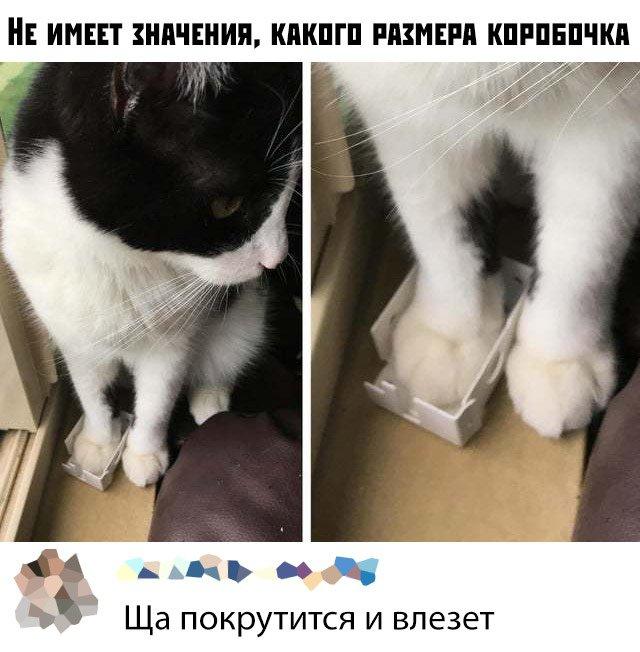 fotopodborka_ponedelnika_30_foto_2.jpg