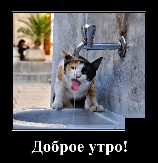 demotivatory_na_vtornik_20_foto_2.jpg