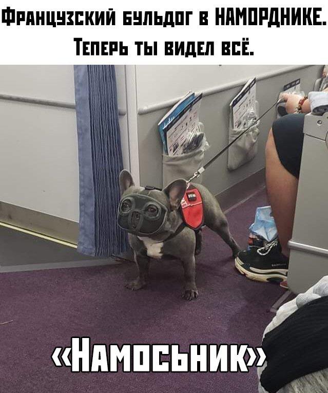 fotopodborka_subboty_58_foto_11.jpg