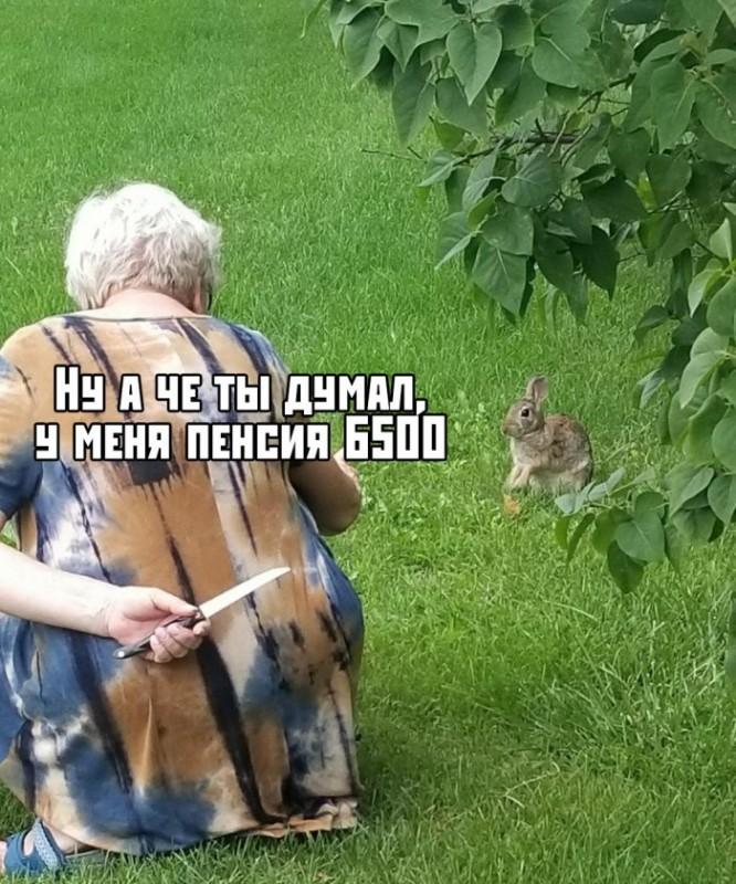 fotopodborka_chetverga_53_foto_1.jpg
