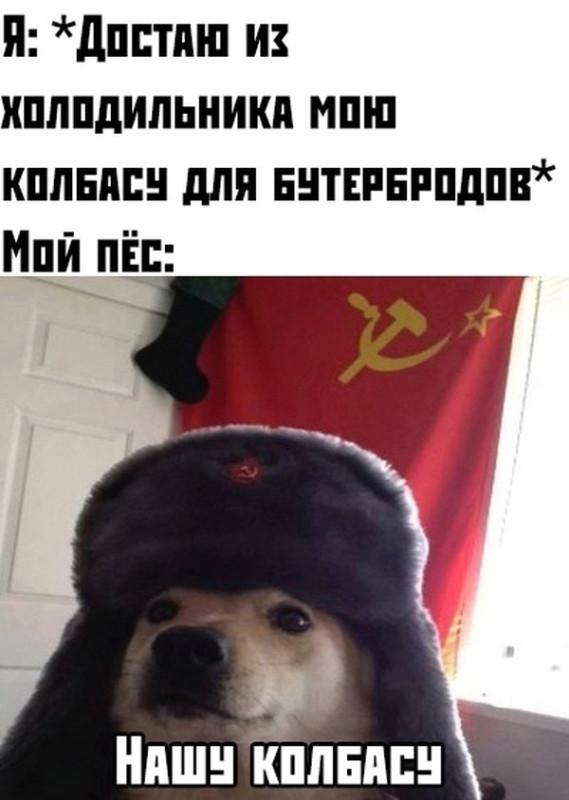fotopodborka_sredy_56_foto_1.jpg