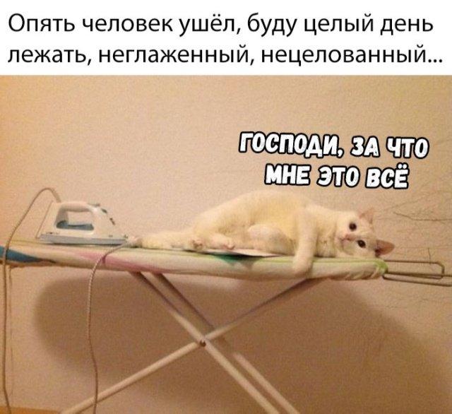 fotopodborka_chetverga_42_foto_6.jpg