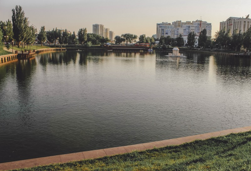 Лебединое озеро 2020.