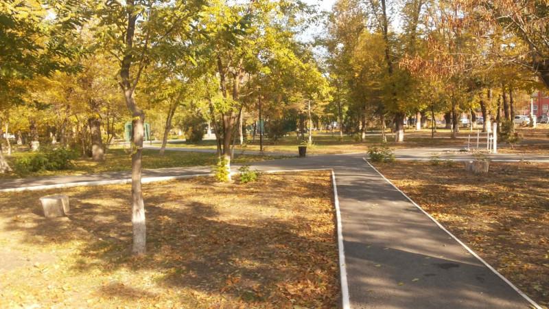 2015 год, ноябрь. Астрахань, университетский парк, осень была частично. Часть деревьев облетела