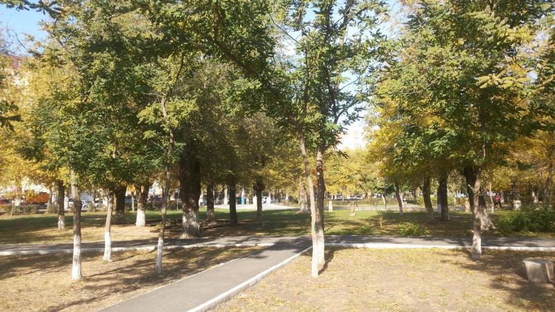2015, год часть деревьев зелёная. Всё тот же парк, всё то же время, ноябрь.