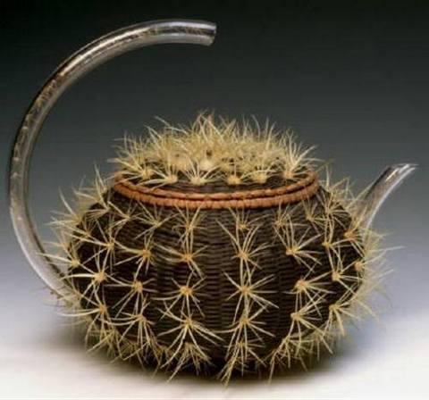 чайник-кактус
