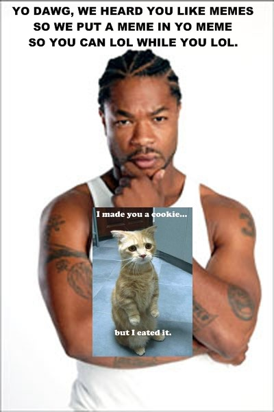 yo dawg, we heard you like memes so we put a meme in yo meme so you can lol while you lol