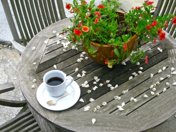 Morning-Coffee-on-the-Terrace-ⓒ-michaela-medina-thegardenerseden